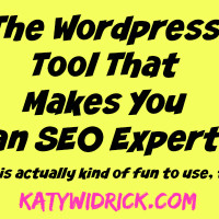 The WordPress Tool That Makes You an SEO Expert